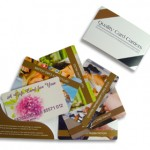 Card carrier – swatch   thumb